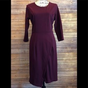 The Limited Burgundy Dress